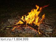 Купить «Костер в ночи», фото № 1804999, снято 12 июня 2010 г. (c) Семин Илья / Фотобанк Лори