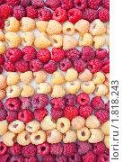 Купить «Ягоды красной и белой малины», фото № 1818243, снято 6 июля 2010 г. (c) Александр Романов / Фотобанк Лори
