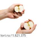 Две половинки одного яблока. Стоковое фото, фотограф Мозымов Александр / Фотобанк Лори