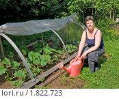 Купить «Женщина с лейкой рядом с парником, где выращивают огурцы», эксклюзивное фото № 1822723, снято 8 июля 2010 г. (c) Румянцева Наталия / Фотобанк Лори