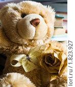 Бежевый плюшевый медведь с бантиком и розой (2010 год). Редакционное фото, фотограф Попонина Ольга / Фотобанк Лори