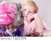 Купить «Девочка с кроликом», фото № 1823979, снято 19 февраля 2010 г. (c) Майя Крученкова / Фотобанк Лори