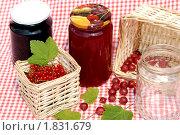 Купить «Варенье из красной смородины и крыжовника», фото № 1831679, снято 9 июля 2010 г. (c) Яшукова Анна / Фотобанк Лори