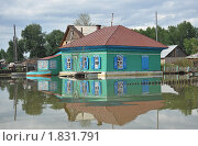 Купить «Наводнение», фото № 1831791, снято 26 июня 2010 г. (c) Free Wind / Фотобанк Лори
