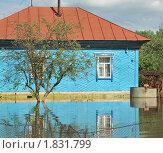 Купить «Затопленный дом», фото № 1831799, снято 26 июня 2010 г. (c) Free Wind / Фотобанк Лори