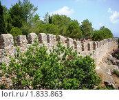 Стена Аланской крепости (2010 год). Стоковое фото, фотограф Татьяна Крамаревская / Фотобанк Лори