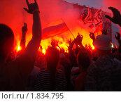 Нашествие 2010, выступление ДДТ. Стоковое фото, фотограф Конева Кира / Фотобанк Лори
