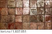 Купить «Текстура плитки», фото № 1837051, снято 4 мая 2010 г. (c) Виктор Застольский / Фотобанк Лори