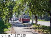 Городская улица с деревьями и троллейбусом летом в контровом свете (2010 год). Редакционное фото, фотограф Валентин Никитин / Фотобанк Лори