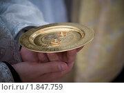 Обручальные кольца на блюдце. Стоковое фото, фотограф Артем Костров / Фотобанк Лори