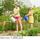 Женщины поливают грядки. Стоковое фото, фотограф Яков Филимонов / Фотобанк Лори