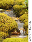 Купить «Водопадик», фото № 1853487, снято 9 августа 2009 г. (c) Тихонов Алексей Владимирович / Фотобанк Лори