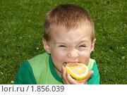 Купить «Ребенок скривился, укусив кислый лимон, фон трава», фото № 1856039, снято 2 июня 2010 г. (c) Константин Бабенко / Фотобанк Лори