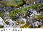 Морские камни. Стоковое фото, фотограф Лариса Корнеева / Фотобанк Лори