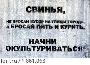 Купить «Граффити», фото № 1861063, снято 18 июля 2010 г. (c) АЛЕКСАНДР МИХЕИЧЕВ / Фотобанк Лори