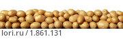 Купить «Картофельные клубни на белом фоне», фото № 1861131, снято 22 июля 2010 г. (c) Бондарь Александр Николаевич / Фотобанк Лори