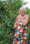Пенсионерка на даче собирает первые яблоки, эксклюзивное фото № 1861327, снято 25 июля 2010 г. (c) Анна Мартынова / Фотобанк Лори