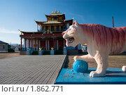 Купить «Тигр у дацана Согчен-дуган», фото № 1862771, снято 10 мая 2010 г. (c) Morgenstjerne / Фотобанк Лори