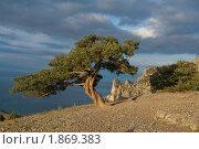 Черное море. Стоковое фото, фотограф Игорь Штро / Фотобанк Лори