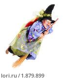 Купить «Ведьма на метле, изолировано», фото № 1879899, снято 22 сентября 2009 г. (c) Pshenichka / Фотобанк Лори