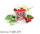 Купить «Красные вишни в чайной паре», фото № 1881471, снято 18 июня 2010 г. (c) Blekcat / Фотобанк Лори
