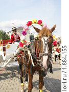 Купить «Омск. Аттракцион катания на лошадях в парке-музее Омская Крепость», фото № 1884155, снято 1 августа 2010 г. (c) Julia Nelson / Фотобанк Лори