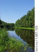 Река в лесу. Стоковое фото, фотограф Наталья Камайкина / Фотобанк Лори