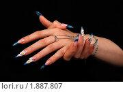 Купить «Дизайн ногтей», фото № 1887807, снято 20 марта 2010 г. (c) Константин Степаненко / Фотобанк Лори