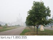 Купить «Смог в Москве, аллея ВВЦ», фото № 1893555, снято 7 августа 2010 г. (c) Александр Курлович / Фотобанк Лори