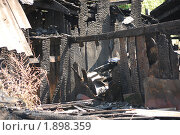 Последствие пожара. Стоковое фото, фотограф Ерёмин Никита / Фотобанк Лори