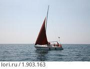 Купить «Яхта с бордовым парусом», фото № 1903163, снято 7 августа 2010 г. (c) Наталья Волкова / Фотобанк Лори