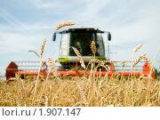 Купить «Комбайн», фото № 1907147, снято 31 июля 2010 г. (c) Дмитрий Калиновский / Фотобанк Лори