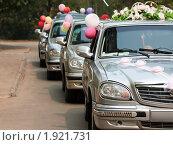 Купить «Ряд свадебных машин, украшенных цветами, шарами и кольцами», фото № 1921731, снято 6 августа 2010 г. (c) Илья Андриянов / Фотобанк Лори
