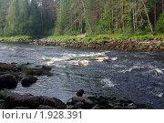 Купить «Порог на реке Шуя, Карелия», фото № 1928391, снято 8 августа 2010 г. (c) Natalya Sidorova / Фотобанк Лори