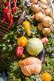 Овощные декорации, фото № 1929779, снято 28 августа 2005 г. (c) Кравецкий Геннадий / Фотобанк Лори