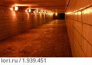 Купить «Туннель в городе», фото № 1939451, снято 14 августа 2010 г. (c) Морозова Татьяна / Фотобанк Лори