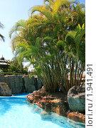 Купить «Роскошный отель на Канарских островах», фото № 1941491, снято 19 июня 2010 г. (c) Васильева Татьяна / Фотобанк Лори