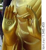 Джняна мудра (мудра сознания ) (2010 год). Стоковое фото, фотограф Сергей Тарасов / Фотобанк Лори