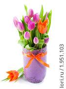 Купить «Букет тюльпанов в вазе», фото № 1951103, снято 30 апреля 2010 г. (c) Наталия Кленова / Фотобанк Лори