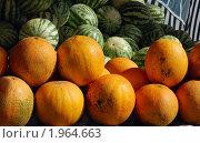 Плоды. Стоковое фото, фотограф Завриева Елена / Фотобанк Лори