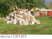 Купить «На дворе трава, на траве дрова», эксклюзивное фото № 1971811, снято 12 сентября 2010 г. (c) Щеголева Ольга / Фотобанк Лори