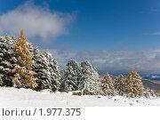Купить «Зимний пейзаж», фото № 1977375, снято 18 сентября 2009 г. (c) Argument / Фотобанк Лори