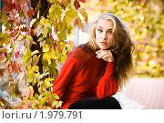 Купить «Осенний портрет», фото № 1979791, снято 9 октября 2009 г. (c) Вероника Галкина / Фотобанк Лори