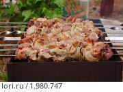 Купить «Приготовление шашлыка», фото № 1980747, снято 21 июня 2009 г. (c) DENIS KARPOV / Фотобанк Лори