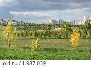 Купить «Осень в ландшафтном парке (Митино, Москва)», фото № 1987039, снято 19 сентября 2010 г. (c) Валерия Попова / Фотобанк Лори