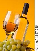 Купить «Вино и виноград», фото № 1987519, снято 20 сентября 2010 г. (c) Антон Балаж / Фотобанк Лори