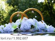 Купить «Свадебное украшение», фото № 1992607, снято 25 июля 2009 г. (c) Наталья Блинова / Фотобанк Лори