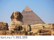 Купить «Сфинкс и пирамида Хеопса, Египет», фото № 1993399, снято 25 мая 2018 г. (c) Светлана Привезенцева / Фотобанк Лори