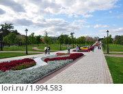 Музей-заповедник Царицыно. Аллея (2009 год). Редакционное фото, фотограф Абушкина Мария / Фотобанк Лори