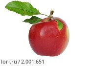 Спелое яблоко. Стоковое фото, фотограф Сергей Слабенко / Фотобанк Лори